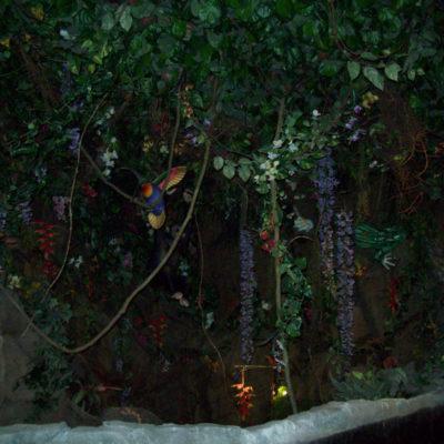 Rain forest cafè1