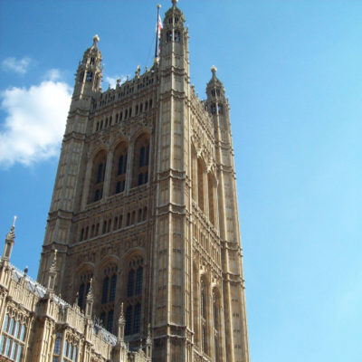 Westminster particolare