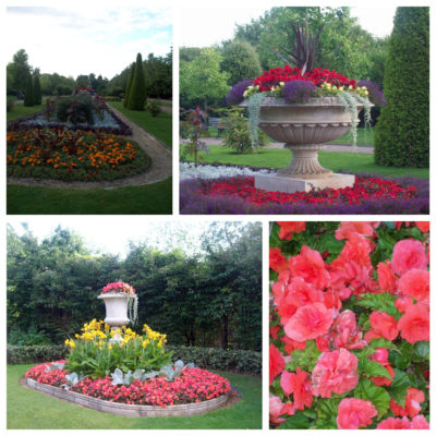 regent park fiori