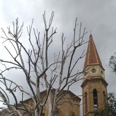 Duomo Arezzo3