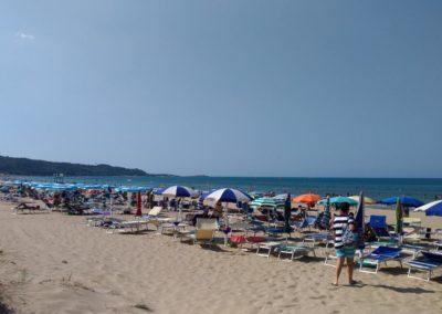 vieste spiaggia